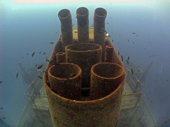 Go Dive Malta: Fab Wrecks