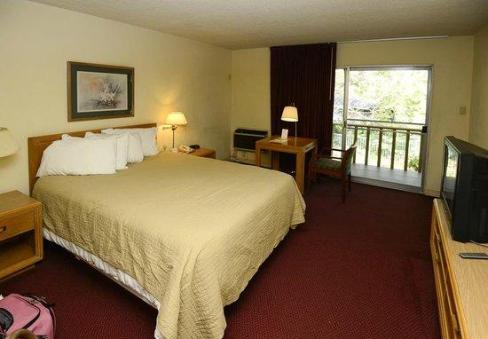 Days Inn Novato/San Francisco: Overall shot of room.