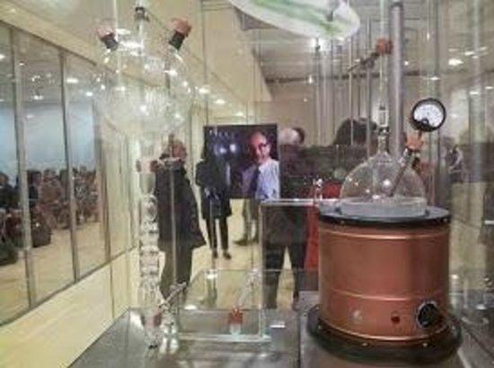 MUSE - Museo delle Scienze : MuSe