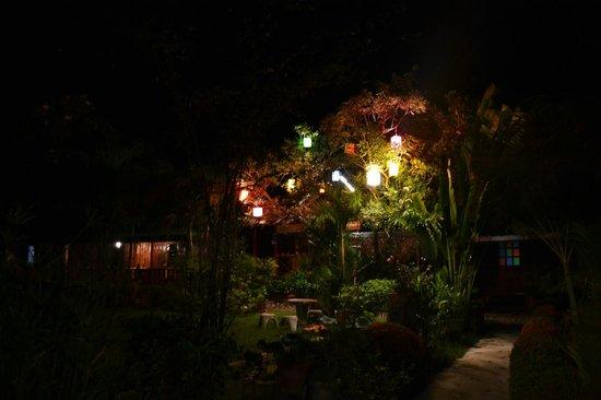 Orchid Hibiscus Guest House: Giardino di sera