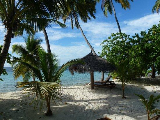 "Filitheyo Island Resort : notre ""plage privée"""
