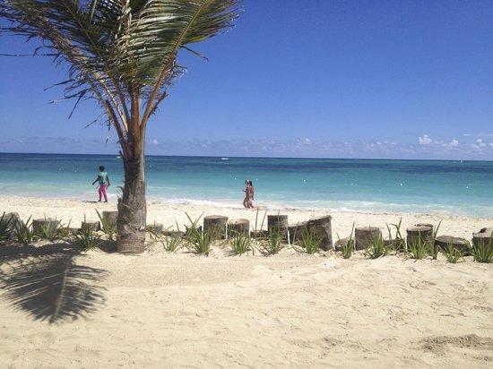VIK Hotel Arena Blanca: Cayenne private beach
