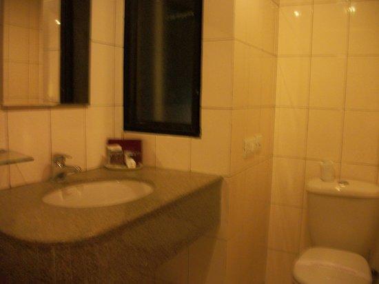 Pragati Manor: Bathroom view