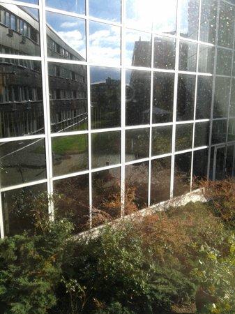 Radisson Blu Hotel, Malmo: Вид с окна. По этому проходу. Все идут к лифту