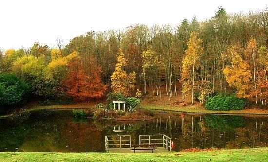 Salomons Estate : autumn lake view