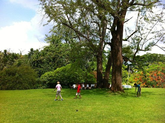 Huntingdon House: tall trees, and playing ground for children, in front of the house