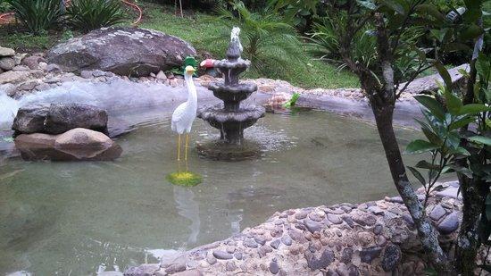 Pousada Chacara do Rio : Mini lago....perfeito.