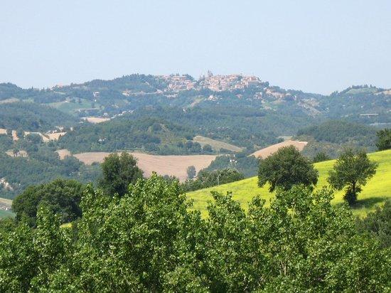 Locanda della Valle Nuova : One can even see the beautiful city of Urbino from the farm