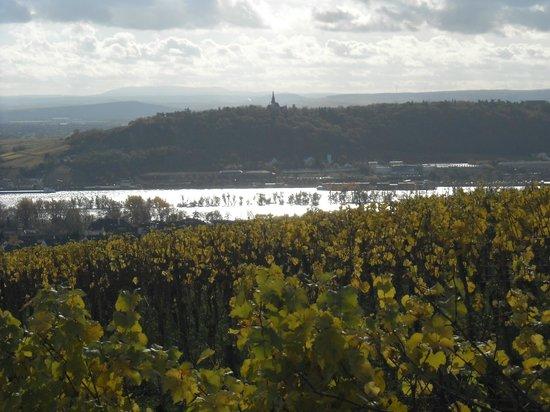 Benedictine Abbey of St. Hildegard : Uitkijken over de omgeving