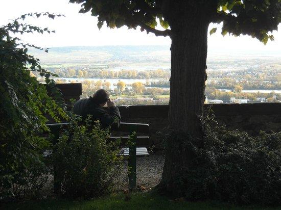 Benedictine Abbey of St. Hildegard : Prachtig uitzicht