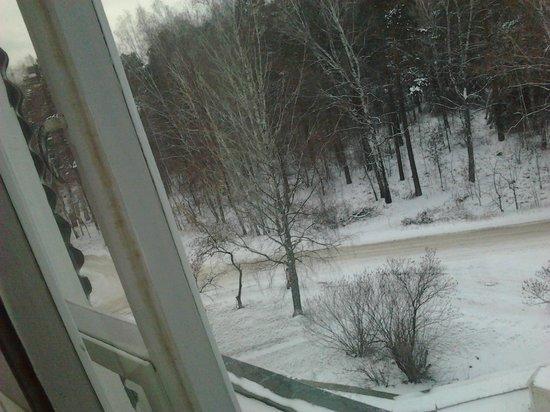 Zolotaya Dolina : Вид из окна