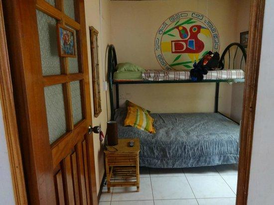 Vida Tropical B and B : Backpacker guest room