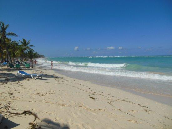 ClubHotel Riu Bambu: Playa del hotel