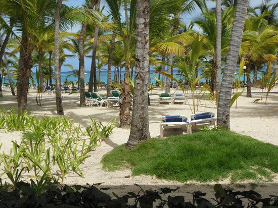 ClubHotel Riu Bambu: Vista desde el hotel a la playa