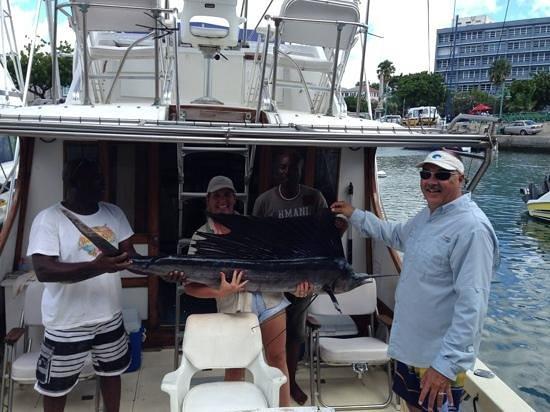 IOU Fishing Charters : I got my wish!!  Sailfish!!
