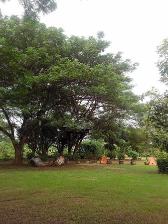 Bua Sawan Resort: สวนและต้นไม้โตๆ