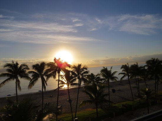Wyndham Deerfield Beach Resort: Early morning view from the room.