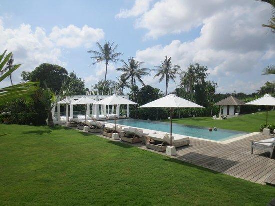 Pure Villa: Pool view