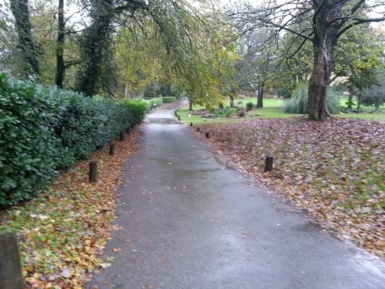 Hengar Manor Country Park: Drive