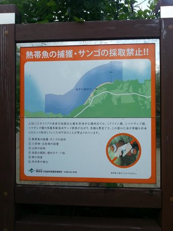 Yonehara Beach : Don't touch nothing!