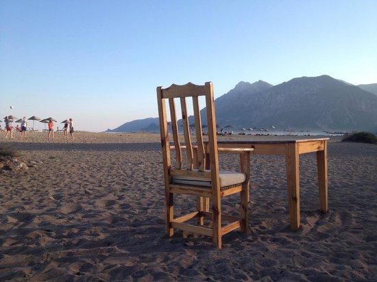 Etenna Bungalow: beach
