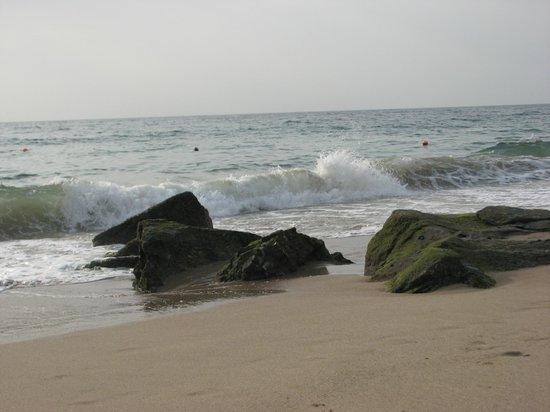 Miramar Al Aqah Beach Resort: побережье