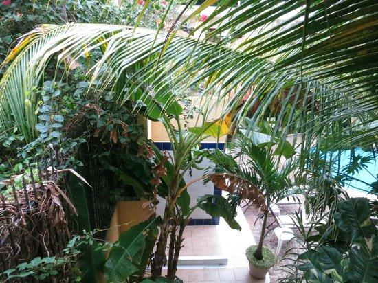 Hotel LunaSol: Вид с балкона