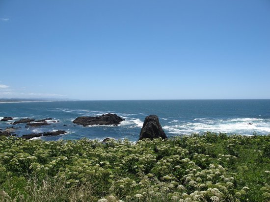 Yaquina Bay Lighthouse: Beach view 2