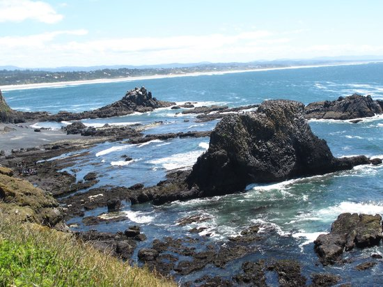 Yaquina Bay Lighthouse: Beach view 1