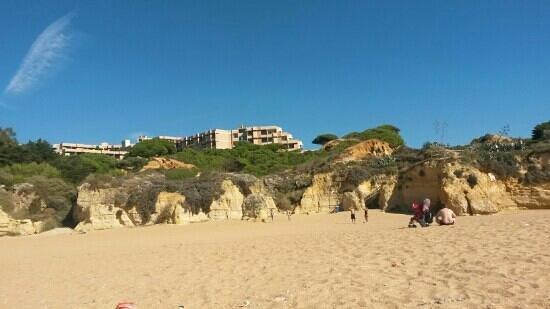 Auramar Beach Resort: Beach with Auramar in background