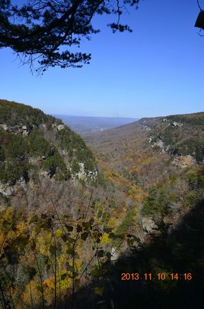 Cloudland Canyon State Park : View.