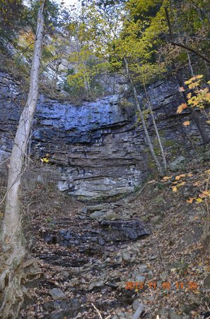 Cloudland Canyon State Park: From bottom.