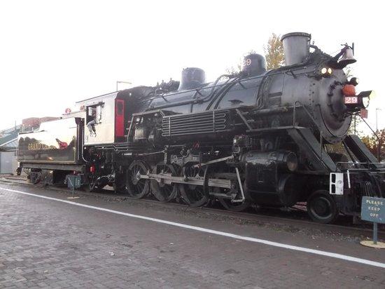Williams Depot : Canyon train