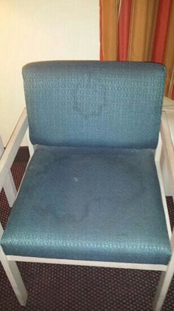 Quality Inn & Suites : lovely chair