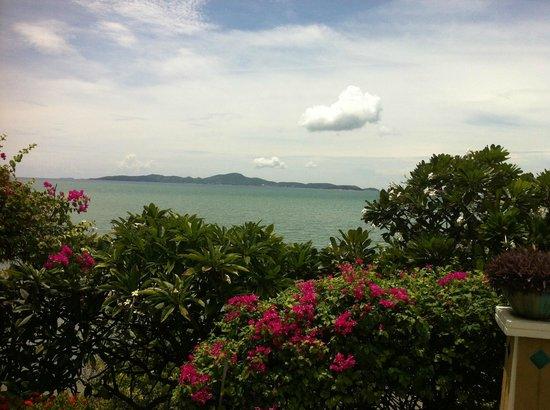 Asia Pattaya Hotel: Вид на море и красивые растения