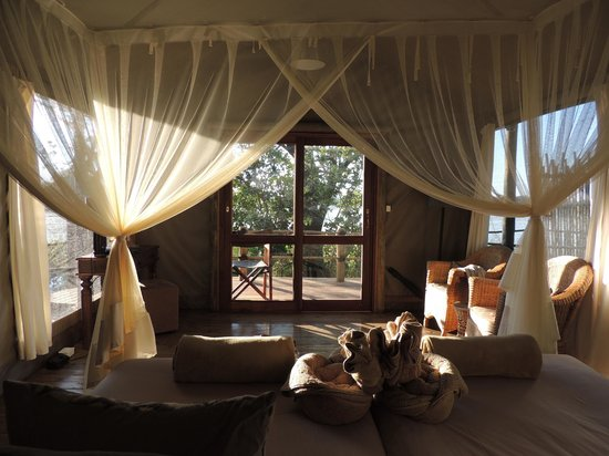 Jacana Tented Safari Camp : View from the bed