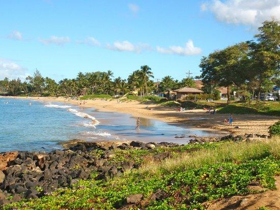 Dolphins Point Maui: Kamaole Beach