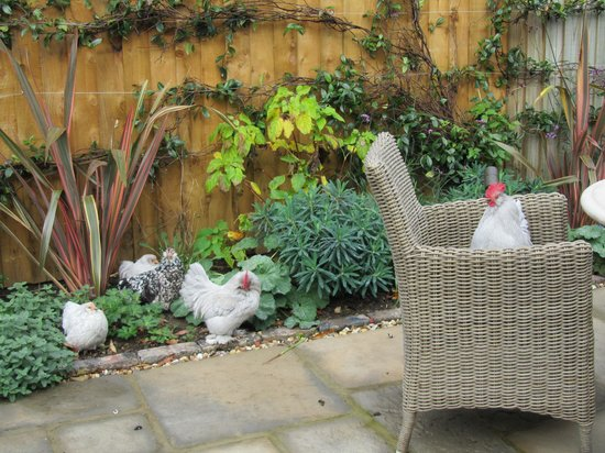 The King's Head Inn: My Little Chickens
