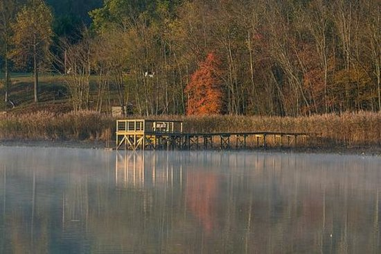 Jug Bay Wetlands Sanctuary: Early Morning Reflection on the Patuxent River