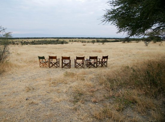 Manyara Ranch Conservancy: Sun downer