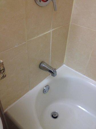 BEST WESTERN PLUS Windsor Inn: Bathroom