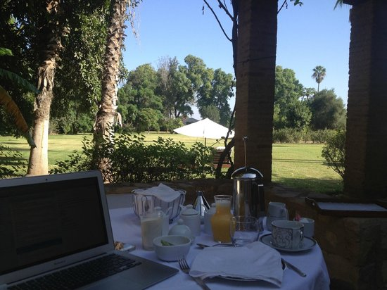La Gazelle d'Or: Breakfast looking over lawn (having to do some work, sadly)