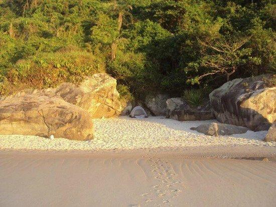 Acampamento na praia de nudismo, Rio de Janeiro.