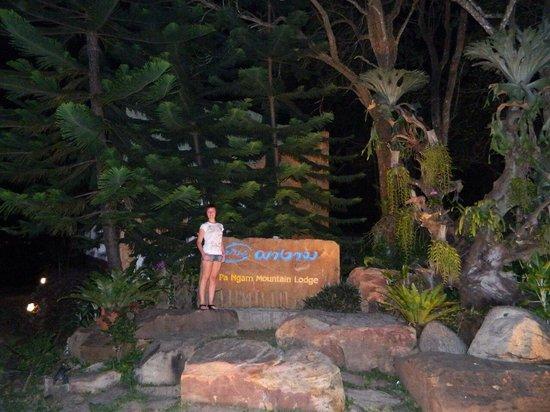 Pa Ngam Mountain Lodge: Вход в отель