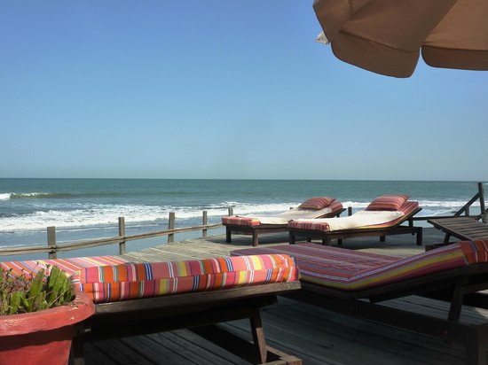 Ngala Lodge: The sunbeds and decking