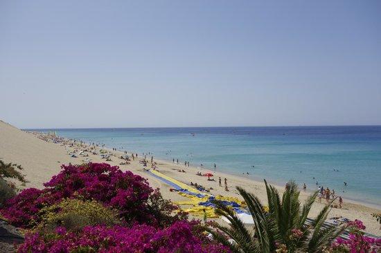 Sensimar Calypso Resort & Spa: Blick auf den Strand vom Hotel