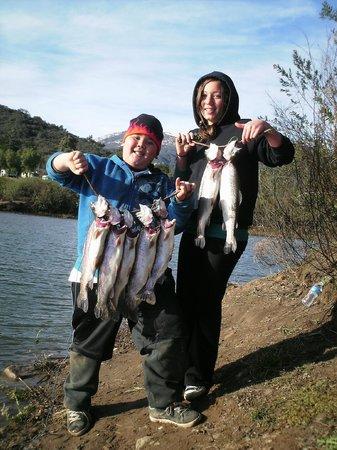 Lake Casitas Recreation Area: Nebraska Tail Walker Trout catch from shore