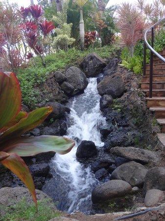Westin Maui Resort And Spa : Falls at Hotel