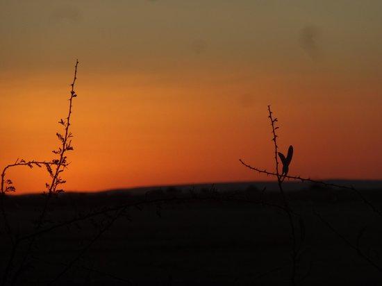 Kiripotib Guest Farm: sun down