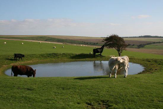 South Downs Way: Passed Ditchling eacon